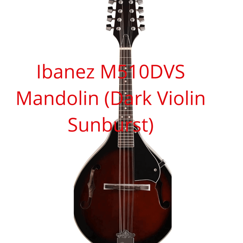 What is the best mandolin for the money