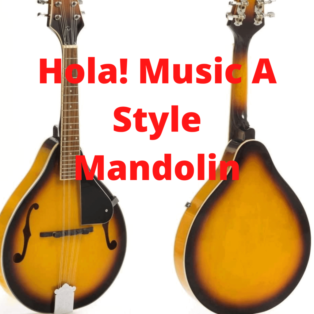 best mandolin for the money