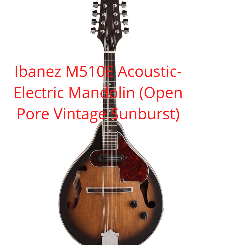 Best mandolins for the money