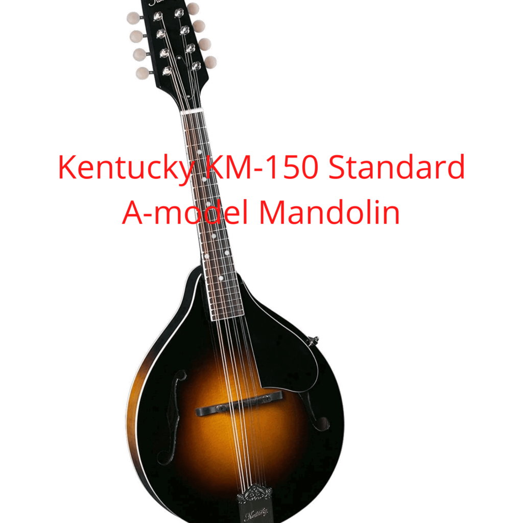 Best mandolin under 500