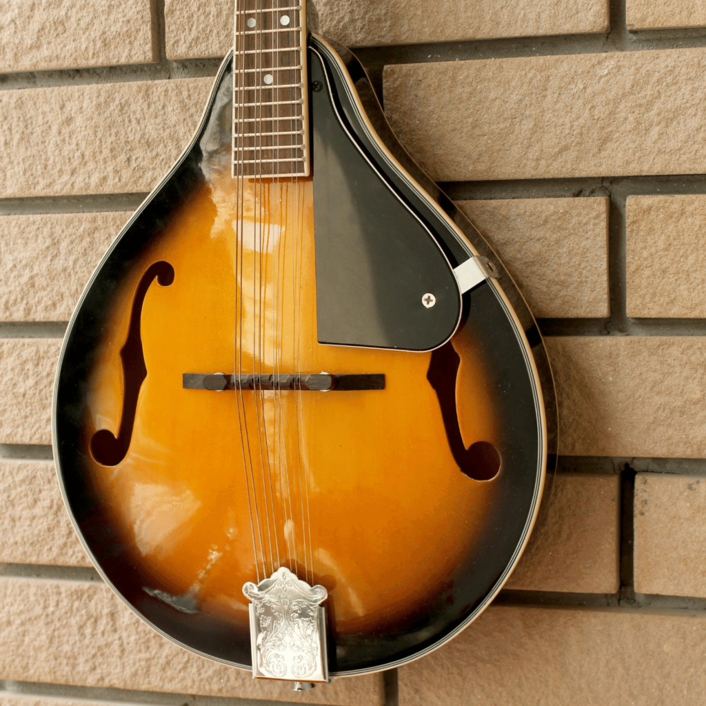 best cheap mandolin