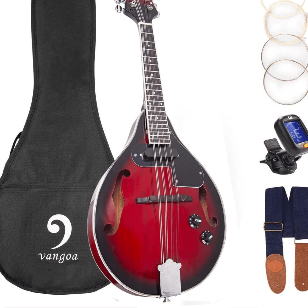 Best mandolin brands