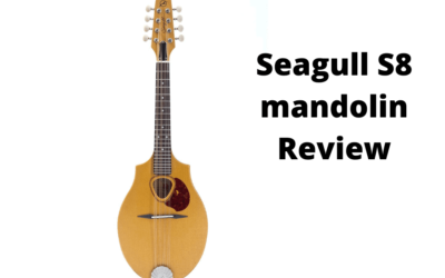 Seagull S8 Mandolin Review: Why Should You Buy?