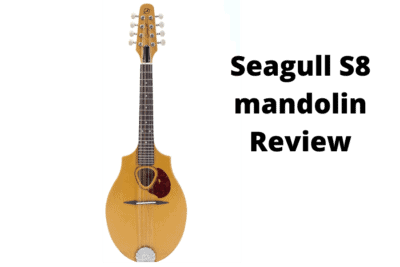 seagull s8 mandolin review