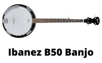 Ibanez B50 Banjo Review: The Best Banjo Under 300$