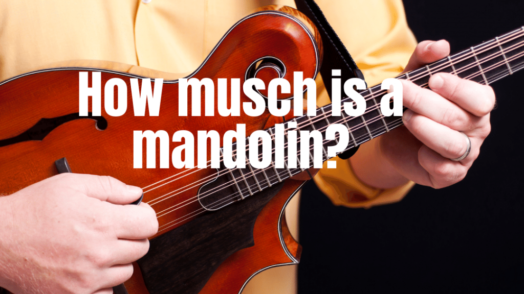 how much is a mandolin